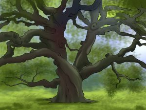 tangled oak tree